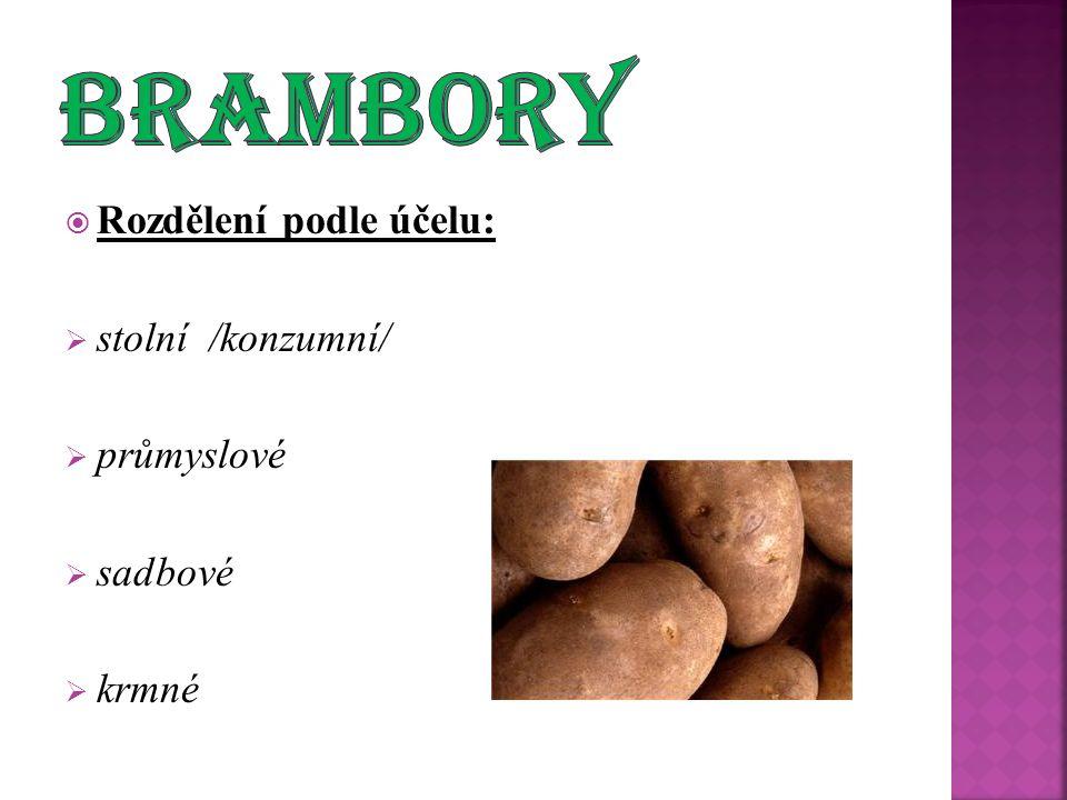  Rozdělení podle účelu:  stolní /konzumní/  průmyslové  sadbové  krmné