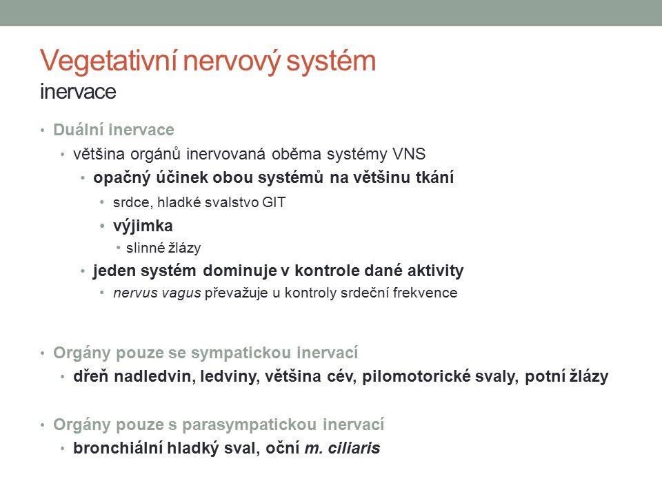Vegetativní nervový systém inervace Duální inervace většina orgánů inervovaná oběma systémy VNS opačný účinek obou systémů na většinu tkání srdce, hladké svalstvo GIT výjimka slinné žlázy jeden systém dominuje v kontrole dané aktivity nervus vagus převažuje u kontroly srdeční frekvence Orgány pouze se sympatickou inervací dřeň nadledvin, ledviny, většina cév, pilomotorické svaly, potní žlázy Orgány pouze s parasympatickou inervací bronchiální hladký sval, oční m.