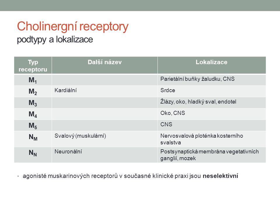 Typ receptoru Další názevLokalizace M1M1 Parietální buňky žaludku, CNS M2M2 KardiálníSrdce M3M3 Žlázy, oko, hladký sval, endotel M4M4 Oko, CNS M5M5 CNS NMNM Svalový (muskulární)Nervosvalová ploténka kosterního svalstva N NeuronálníPostsynaptická membrána vegetativních ganglií, mozek Cholinergní receptory podtypy a lokalizace agonisté muskarinových receptorů v současné klinické praxi jsou neselektivní