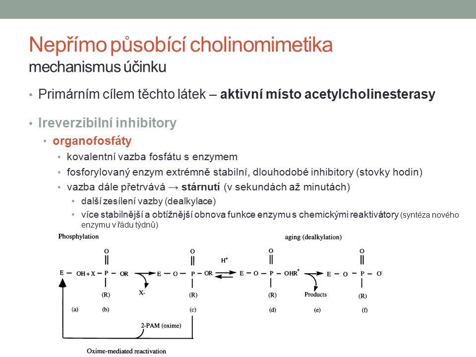 Primárním cílem těchto látek – aktivní místo acetylcholinesterasy Ireverzibilní inhibitory organofosfáty kovalentní vazba fosfátu s enzymem fosforylovaný enzym extrémně stabilní, dlouhodobé inhibitory (stovky hodin) vazba dále přetrvává → stárnutí (v sekundách až minutách) další zesílení vazby (dealkylace) více stabilnější a obtížnější obnova funkce enzymu s chemickými reaktivátory (syntéza nového enzymu v řádu týdnů) Nepřímo působící cholinomimetika mechanismus účinku