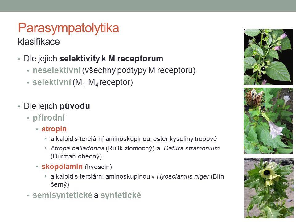 Dle jejich selektivity k M receptorům neselektivní (všechny podtypy M receptorů) selektivní (M 1 -M 4 receptor) Dle jejich původu přírodní atropin alkaloid s terciární aminoskupinou, ester kyseliny tropové Atropa belladonna (Rulík zlomocný) a Datura stramonium (Durman obecný) skopolamin (hyoscin) alkaloid s terciární aminoskupinou v Hyosciamus niger (Blín černý) semisyntetické a syntetické Parasympatolytika klasifikace