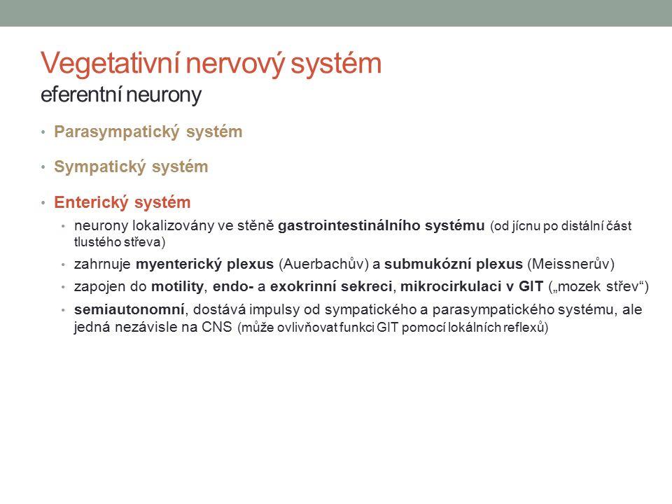 """Parasympatický systém Sympatický systém Enterický systém neurony lokalizovány ve stěně gastrointestinálního systému (od jícnu po distální část tlustého střeva) zahrnuje myenterický plexus (Auerbachův) a submukózní plexus (Meissnerův) zapojen do motility, endo- a exokrinní sekreci, mikrocirkulaci v GIT (""""mozek střev ) semiautonomní, dostává impulsy od sympatického a parasympatického systému, ale jedná nezávisle na CNS (může ovlivňovat funkci GIT pomocí lokálních reflexů) Vegetativní nervový systém eferentní neurony"""