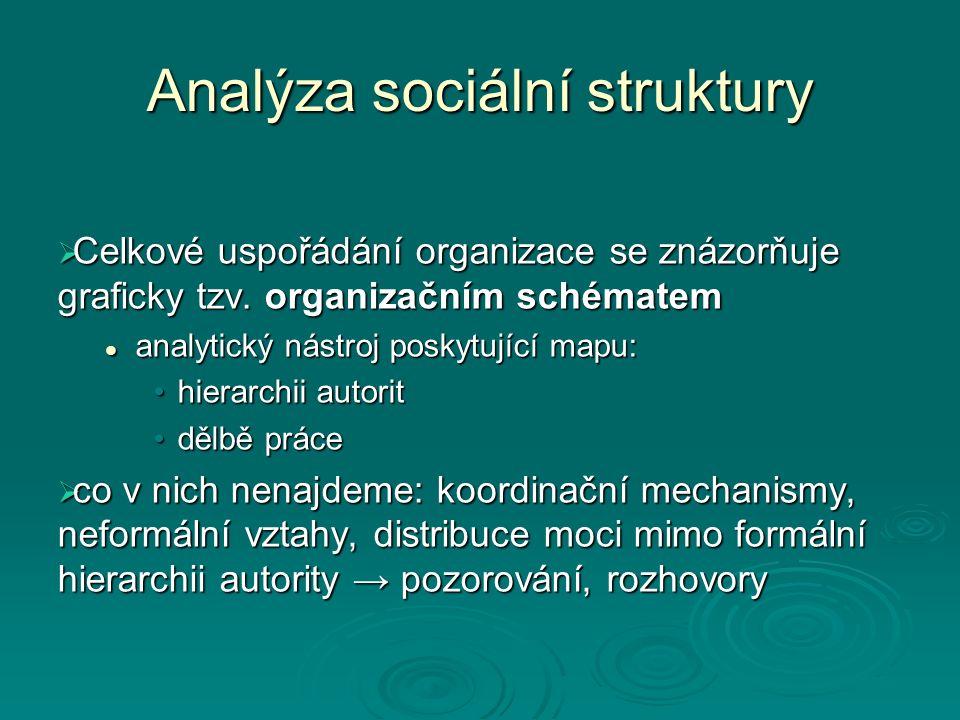 Analýza sociální struktury  Celkové uspořádání organizace se znázorňuje graficky tzv. organizačním schématem analytický nástroj poskytující mapu: ana