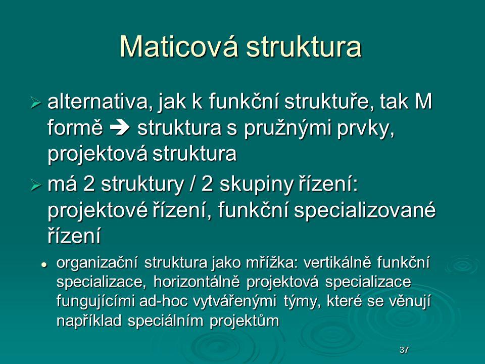 37 Maticová struktura  alternativa, jak k funkční struktuře, tak M formě  struktura s pružnými prvky, projektová struktura  má 2 struktury / 2 skup