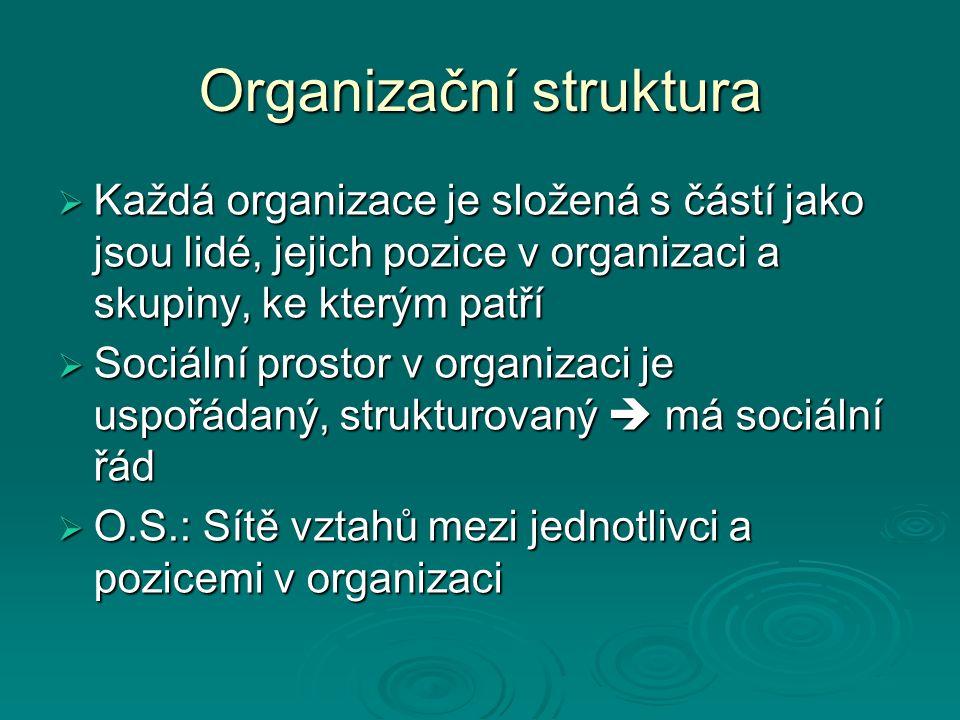 Organizační struktura  Každá organizace je složená s částí jako jsou lidé, jejich pozice v organizaci a skupiny, ke kterým patří  Sociální prostor v organizaci je uspořádaný, strukturovaný  má sociální řád  O.S.: Sítě vztahů mezi jednotlivci a pozicemi v organizaci