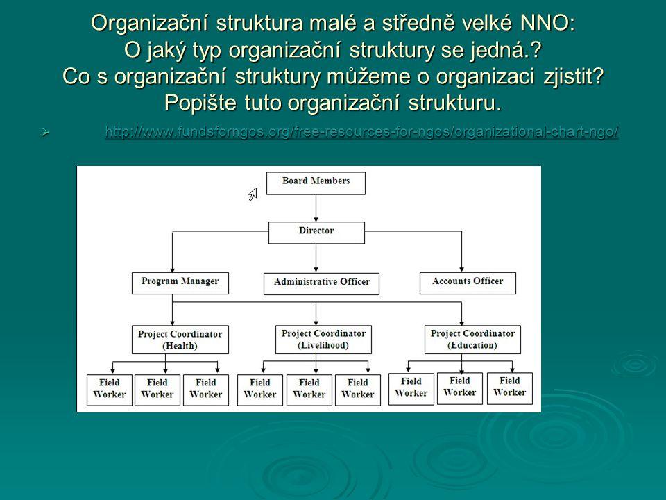 Organizační struktura malé a středně velké NNO: O jaký typ organizační struktury se jedná.? Co s organizační struktury můžeme o organizaci zjistit? Po