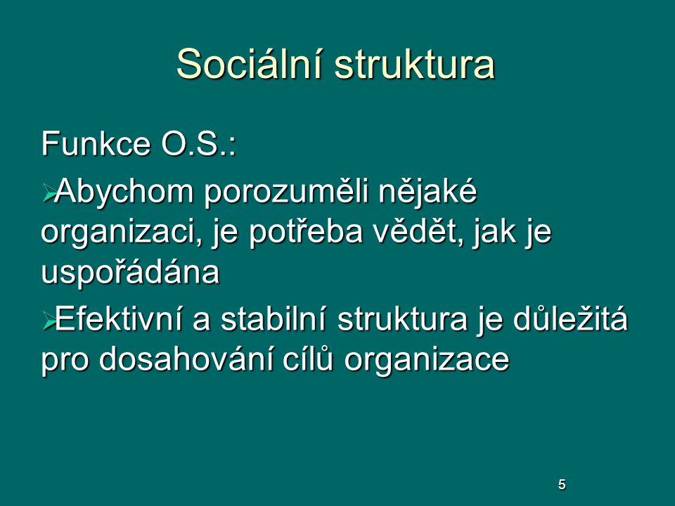 Sociální struktura Funkce O.S.:  Abychom porozuměli nějaké organizaci, je potřeba vědět, jak je uspořádána  Efektivní a stabilní struktura je důleži