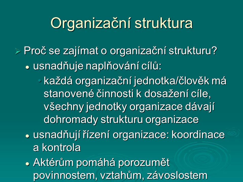 Organizační struktura  Proč se zajímat o organizační strukturu? usnadňuje naplňování cílů: usnadňuje naplňování cílů: každá organizační jednotka/člov