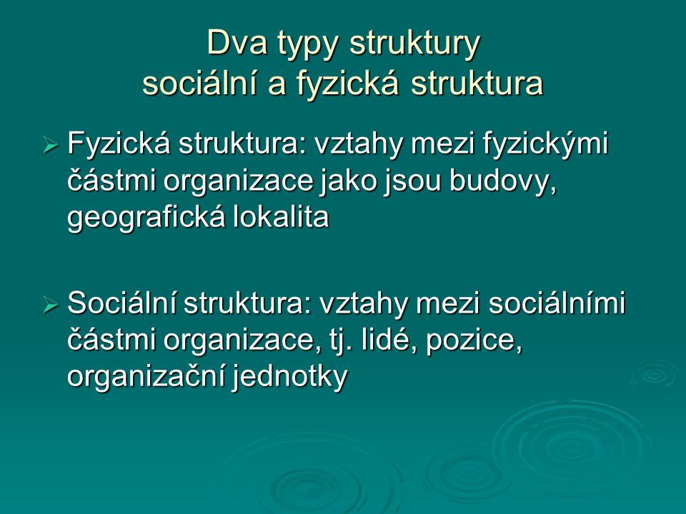 Dva typy struktury sociální a fyzická struktura  Fyzická struktura: vztahy mezi fyzickými částmi organizace jako jsou budovy, geografická lokalita 