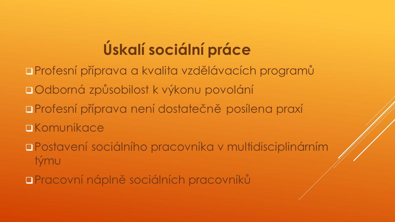 Úskalí sociální práce  Profesní příprava a kvalita vzdělávacích programů  Odborná způsobilost k výkonu povolání  Profesní příprava není dostatečně