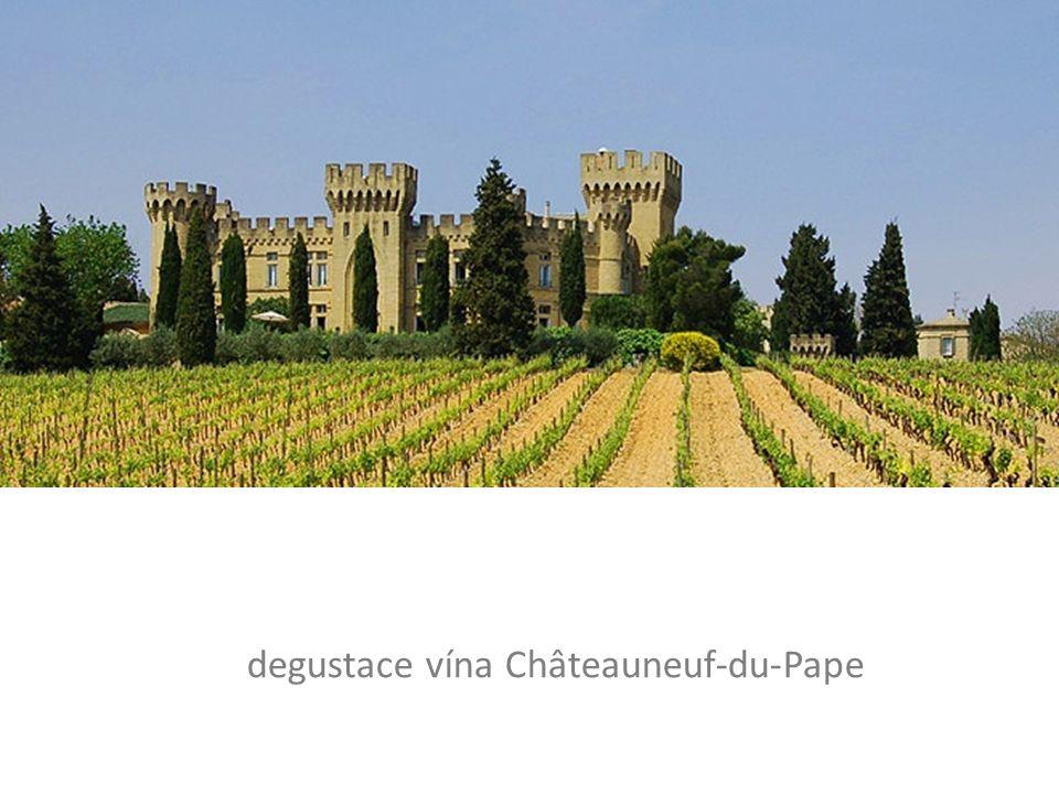degustace vína Châteauneuf-du-Pape