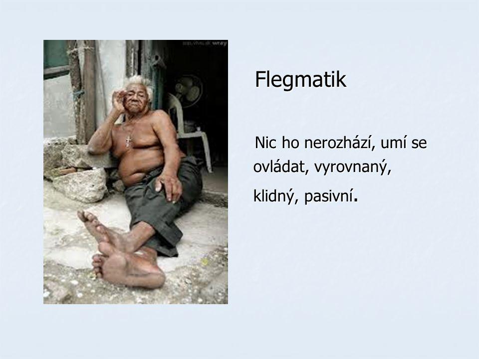 Flegmatik Flegmatik Nic ho nerozhází, umí se Nic ho nerozhází, umí se ovládat, vyrovnaný, ovládat, vyrovnaný, klidný, pasivní.
