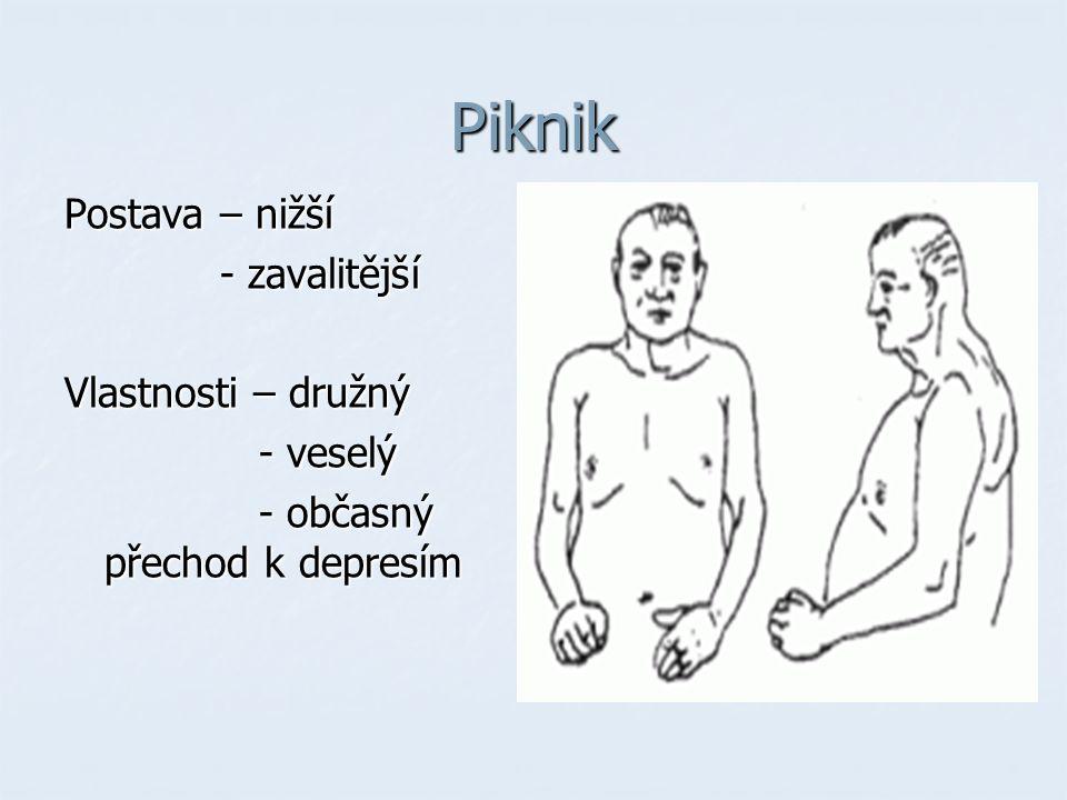 Piknik Postava – nižší - zavalitější - zavalitější Vlastnosti – družný - veselý - veselý - občasný přechod k depresím - občasný přechod k depresím