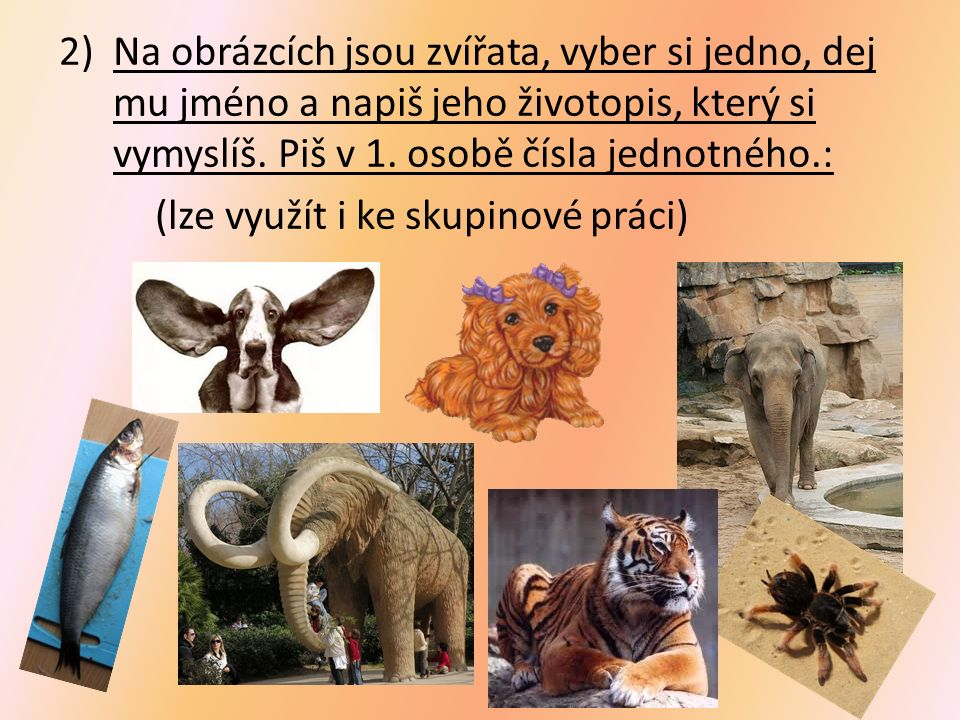 2)Na obrázcích jsou zvířata, vyber si jedno, dej mu jméno a napiš jeho životopis, který si vymyslíš.