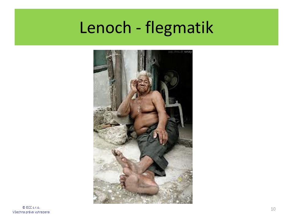 Lenoch - flegmatik 10 © ECC s.r.o. Všechna práva vyhrazena
