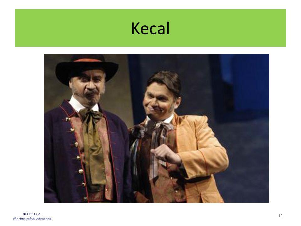 Kecal 11 © ECC s.r.o. Všechna práva vyhrazena