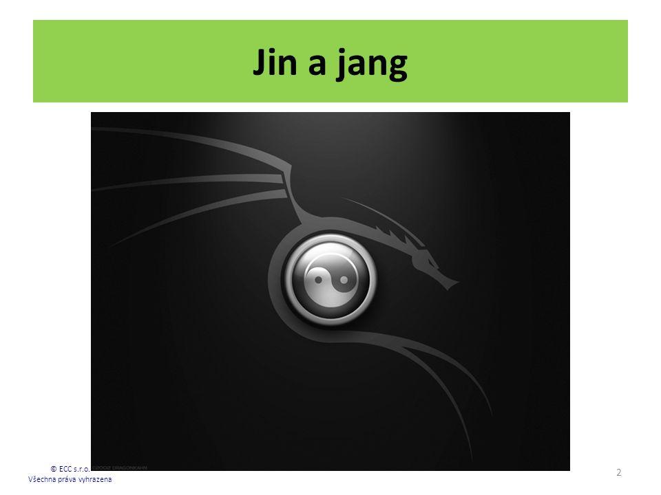 Jin a jang 2 © ECC s.r.o. Všechna práva vyhrazena