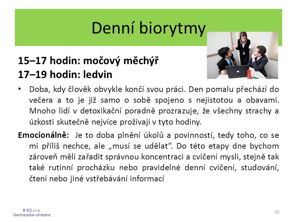 Denní biorytmy 15–17 hodin: močový měchýř 17–19 hodin: ledvin Doba, kdy člověk obvykle končí svou práci. Den pomalu přechází do večera a to je již sam