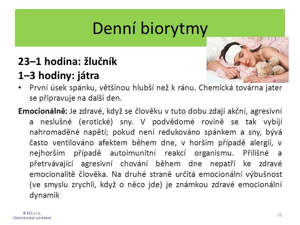 Denní biorytmy 23–1 hodina: žlučník 1–3 hodiny: játra První úsek spánku, většinou hlubší než k ránu. Chemická továrna jater se připravuje na další den