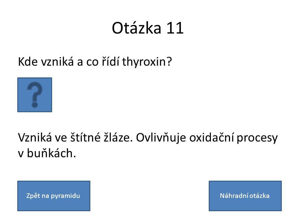 Otázka 11 Kde vzniká a co řídí thyroxin? Vzniká ve štítné žláze. Ovlivňuje oxidační procesy v buňkách. Zpět na pyramiduNáhradní otázka