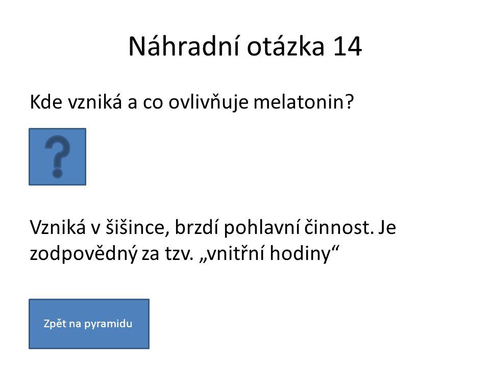 """Náhradní otázka 14 Kde vzniká a co ovlivňuje melatonin? Vzniká v šišince, brzdí pohlavní činnost. Je zodpovědný za tzv. """"vnitřní hodiny"""" Zpět na pyram"""