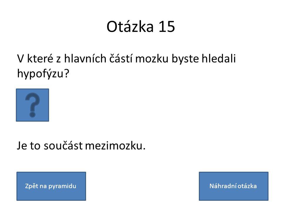 Otázka 15 V které z hlavních částí mozku byste hledali hypofýzu? Je to součást mezimozku. Zpět na pyramiduNáhradní otázka