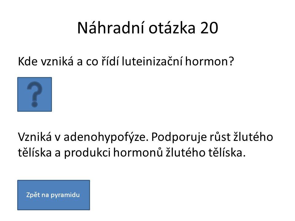 Náhradní otázka 20 Kde vzniká a co řídí luteinizační hormon? Vzniká v adenohypofýze. Podporuje růst žlutého tělíska a produkci hormonů žlutého tělíska