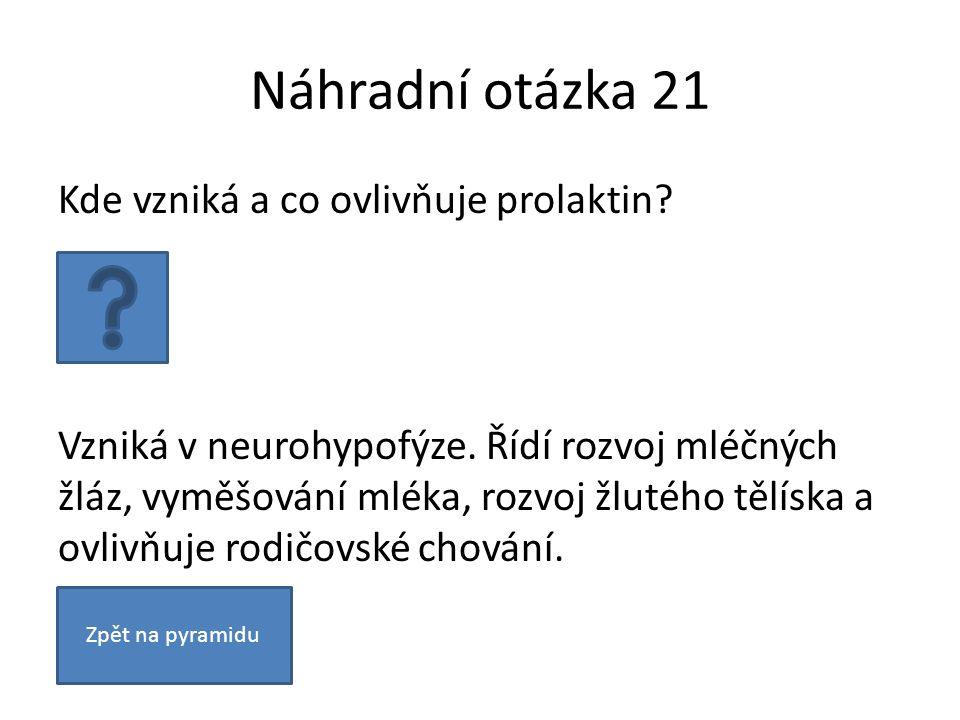 Náhradní otázka 21 Kde vzniká a co ovlivňuje prolaktin? Vzniká v neurohypofýze. Řídí rozvoj mléčných žláz, vyměšování mléka, rozvoj žlutého tělíska a