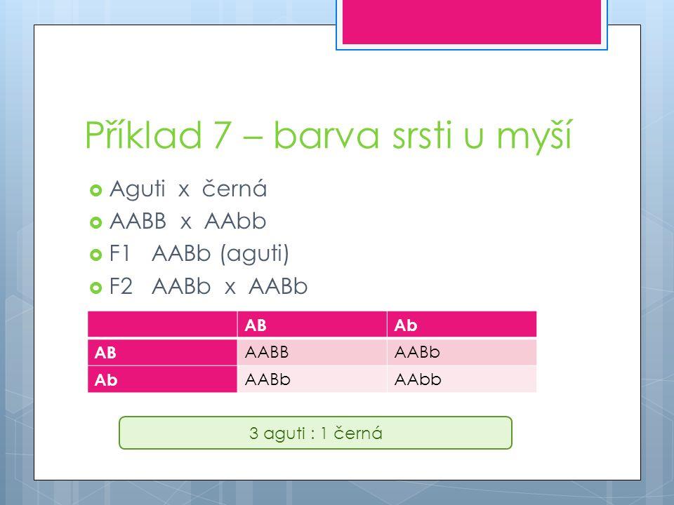 Příklad 7 – barva srsti u myší  Aguti x černá  AABB x AAbb  F1AABb (aguti)  F2AABb x AABb ABAb AB AABBAABb Ab AABbAAbb 3 aguti : 1 černá