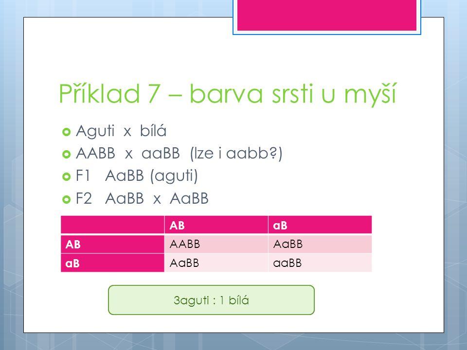Příklad 7 – barva srsti u myší  Aguti x bílá  AABB x aaBB (lze i aabb )  F1AaBB (aguti)  F2AaBB x AaBB ABaB AB AABBAaBB aB AaBBaaBB 3aguti : 1 bílá