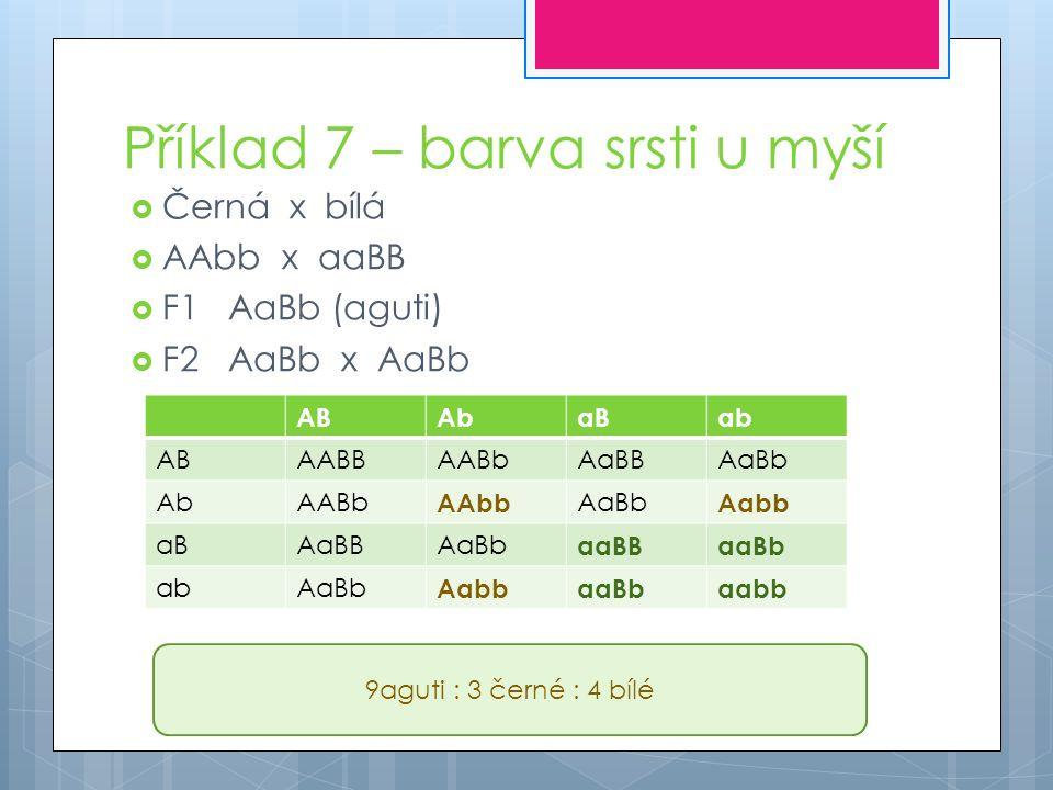 Příklad 7 – barva srsti u myší  Černá x bílá  AAbb x aaBB  F1AaBb (aguti)  F2AaBb x AaBb ABAbaBab ABAABBAABbAaBBAaBb AbAABb AAbb AaBb Aabb aBAaBBAaBb aaBBaaBb abAaBb AabbaaBbaabb 9aguti : 3 černé : 4 bílé