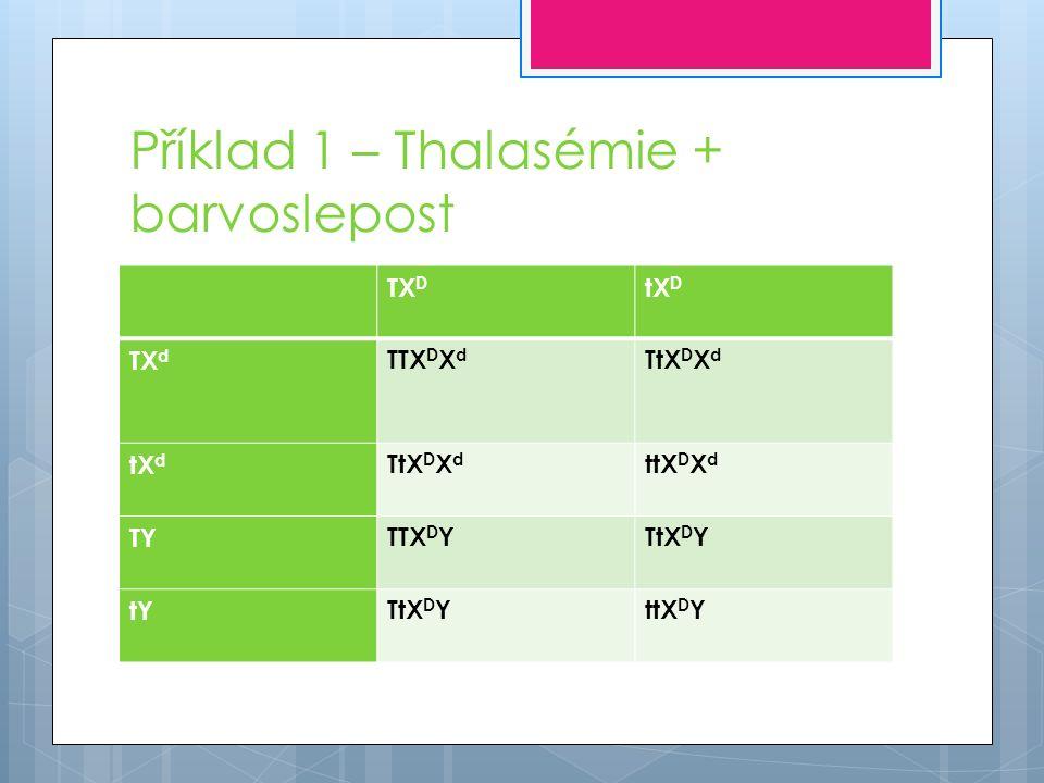 Příklad 1 – Thalasémie + barvoslepost TX D tX D TXdTXd TTX D X d TtX D X d tXdtXd ttX D X d TYTTX D YTtX D Y tYTtX D YttX D Y