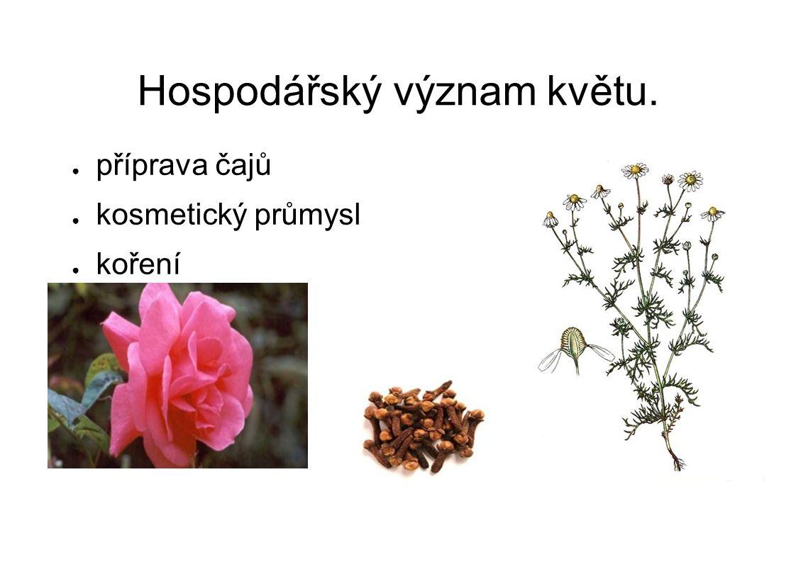 Hospodářský význam květu. ● příprava čajů ● kosmetický průmysl ● koření