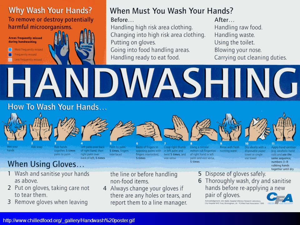 http://www.chilledfood.org/_gallery/Handwash%20poster.gif