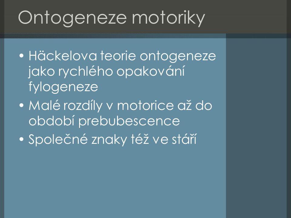 Ontogeneze motoriky Häckelova teorie ontogeneze jako rychlého opakování fylogeneze Malé rozdíly v motorice až do období prebubescence Společné znaky též ve stáří