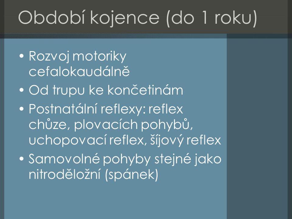 Období kojence (do 1 roku) Rozvoj motoriky cefalokaudálně Od trupu ke končetinám Postnatální reflexy: reflex chůze, plovacích pohybů, uchopovací reflex, šíjový reflex Samovolné pohyby stejné jako nitroděložní (spánek)