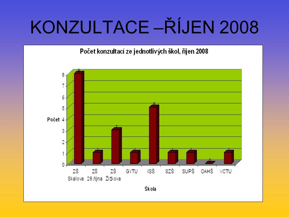 KONZULTACE –ŘÍJEN 2008
