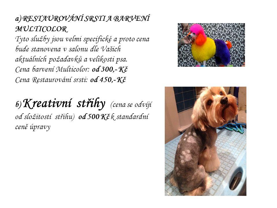 a) RESTAUROVÁNÍ SRSTI A BARVENÍ MULTICOLOR Tyto služby jsou velmi specifické a proto cena bude stanovena v salonu dle Vašich aktuálních požadavků a velikosti psa.
