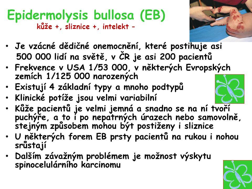 Epidermolysis bullosa (EB) kůže +, sliznice +, intelekt - Je vzácné dědičné onemocnění, které postihuje asi 500 000 lidí na světě, v ČR je asi 200 pacientů Frekvence v USA 1/53 000, v některých Evropských zemích 1/125 000 narozených Existují 4 základní typy a mnoho podtypů Klinické potíže jsou velmi variabilní Kůže pacientů je velmi jemná a snadno se na ní tvoří puchýře, a to i po nepatrných úrazech nebo samovolně, stejným způsobem mohou být postiženy i sliznice U některých forem EB prsty pacientů na rukou i nohou srůstají Dalším závažným problémem je možnost výskytu spinocelulárního karcinomu