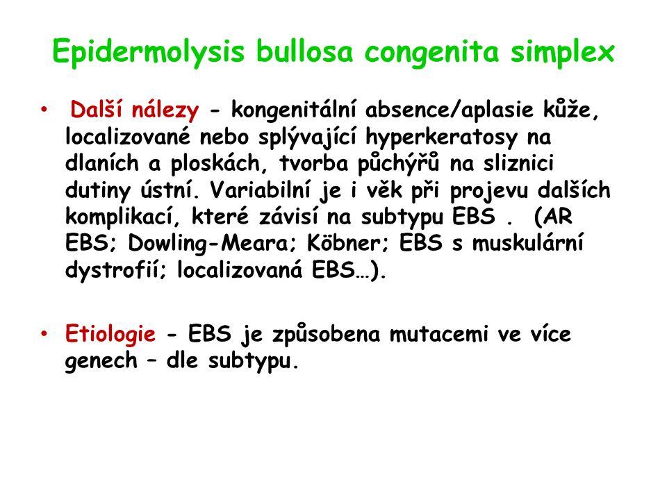 Epidermolysis bullosa congenita simplex Další nálezy - kongenitální absence/aplasie kůže, localizované nebo splývající hyperkeratosy na dlaních a ploskách, tvorba půchýřů na sliznici dutiny ústní.