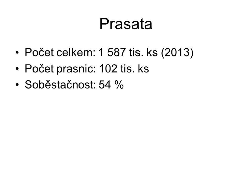 Prasata Počet celkem: 1 587 tis. ks (2013) Počet prasnic: 102 tis. ks Soběstačnost: 54 %
