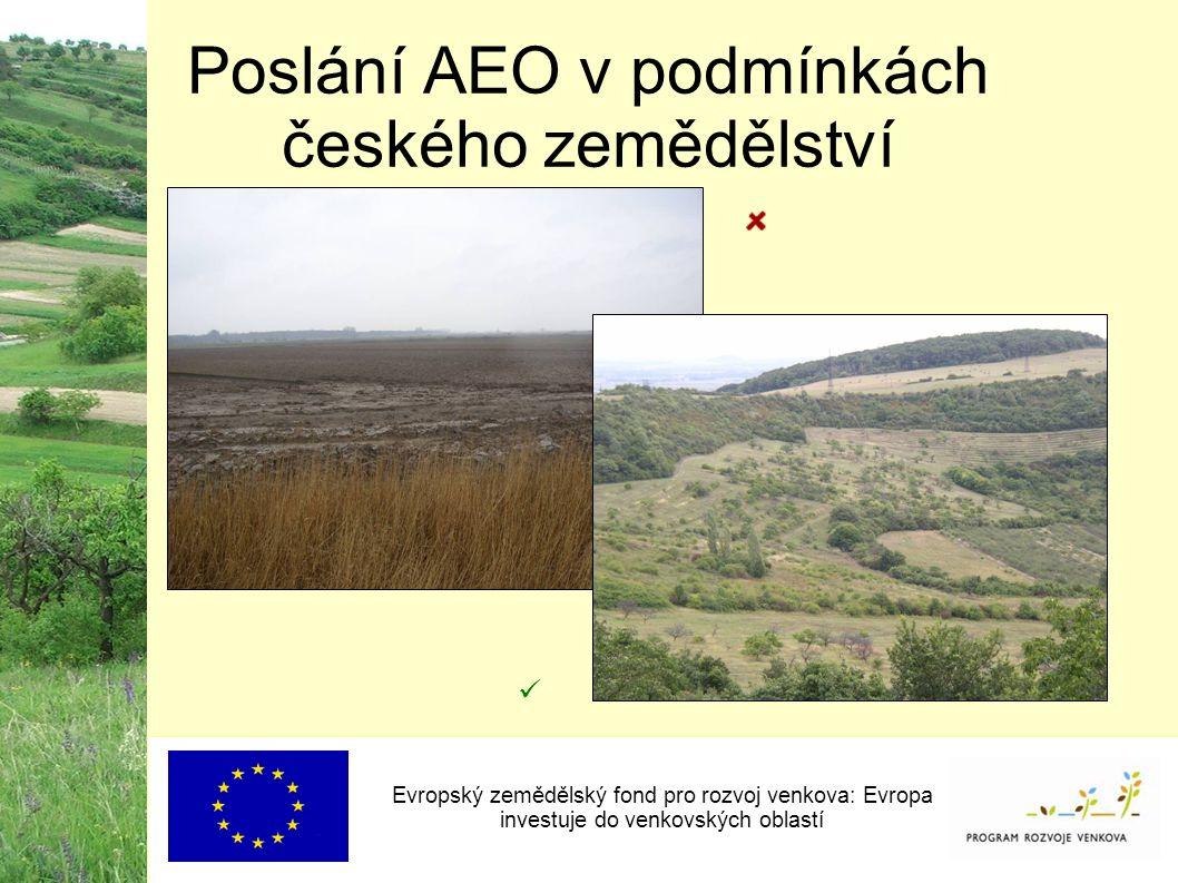 Poslání AEO v podmínkách českého zemědělství Evropský zemědělský fond pro rozvoj venkova: Evropa investuje do venkovských oblastí