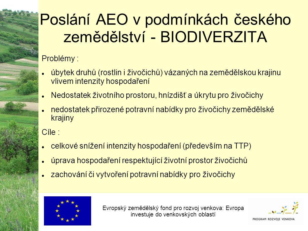 Poslání AEO v podmínkách českého zemědělství - BIODIVERZITA Evropský zemědělský fond pro rozvoj venkova: Evropa investuje do venkovských oblastí Problémy : úbytek druhů (rostlin i živočichů) vázaných na zemědělskou krajinu vlivem intenzity hospodaření Nedostatek životního prostoru, hnízdišť a úkrytu pro živočichy nedostatek přirozené potravní nabídky pro živočichy zemědělské krajiny Cíle : celkové snížení intenzity hospodaření (především na TTP) úprava hospodaření respektující životní prostor živočichů zachování či vytvoření potravní nabídky pro živočichy