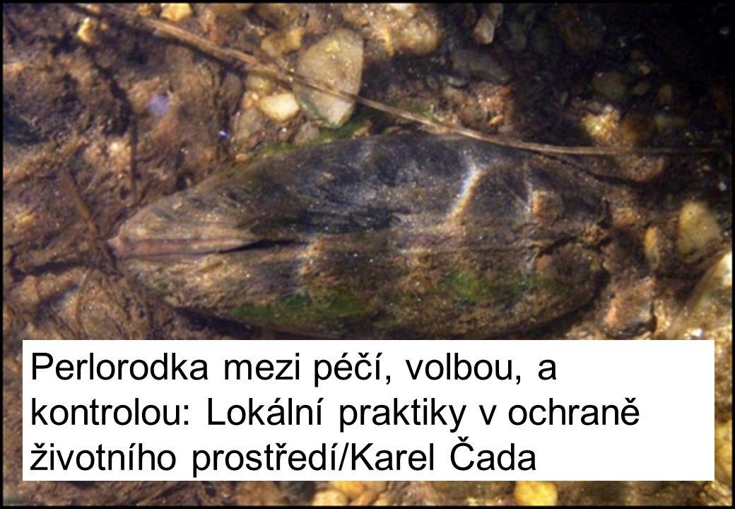 Výskyt perlorodky v ČR (AOPK ČR, 2013)