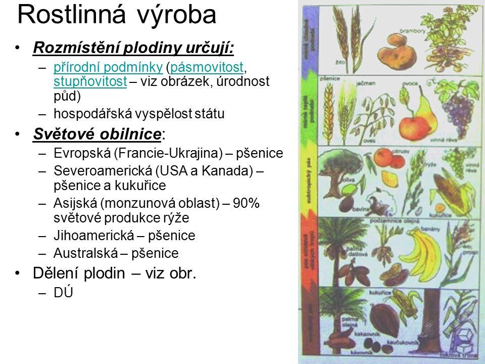 Rostlinná výroba Rozmístění plodiny určují: –přírodní podmínky (pásmovitost, stupňovitost – viz obrázek, úrodnost půd)přírodní podmínkypásmovitost stupňovitost –hospodářská vyspělost státu Světové obilnice: –Evropská (Francie-Ukrajina) – pšenice –Severoamerická (USA a Kanada) – pšenice a kukuřice –Asijská (monzunová oblast) – 90% světové produkce rýže –Jihoamerická – pšenice –Australská – pšenice Dělení plodin – viz obr.