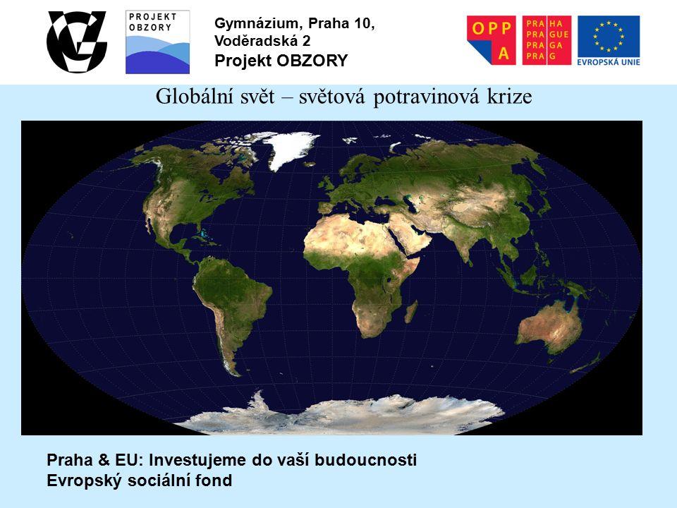 Praha & EU: Investujeme do vaší budoucnosti Evropský sociální fond Gymnázium, Praha 10, Voděradská 2 Projekt OBZORY Globální svět – světová potravinová krize