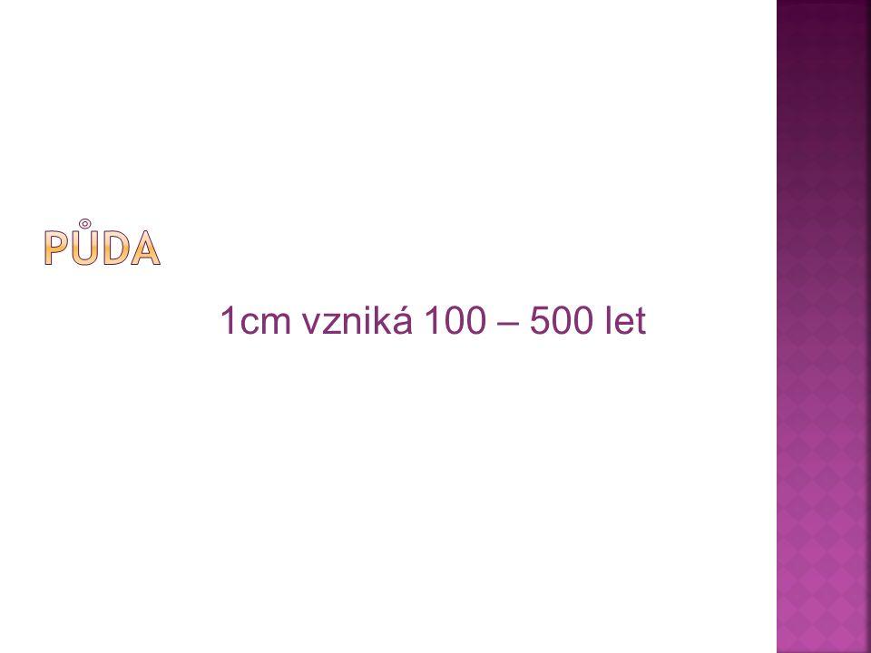 1cm vzniká 100 – 500 let