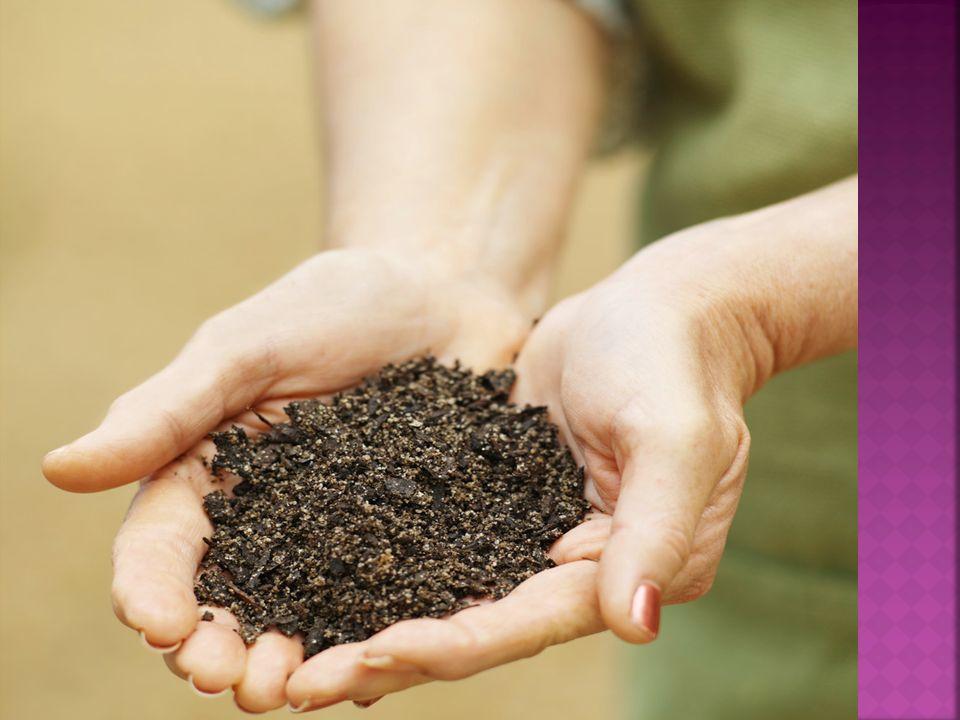 Znečištění půd nejvíce způsobuje: dopravaprůmyslzemědělství