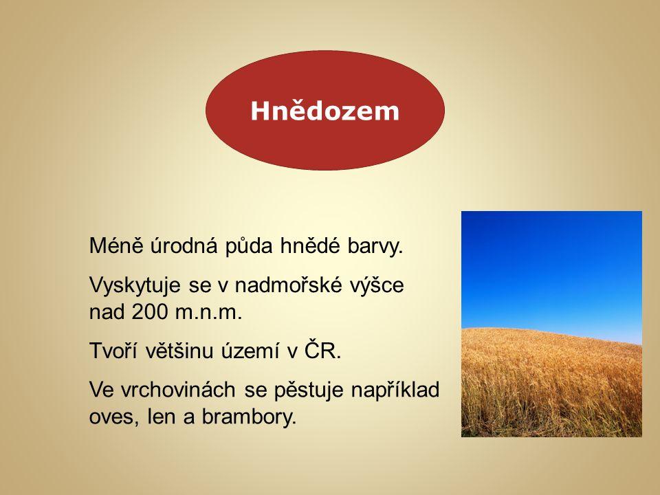 Hnědozem Méně úrodná půda hnědé barvy. Vyskytuje se v nadmořské výšce nad 200 m.n.m.