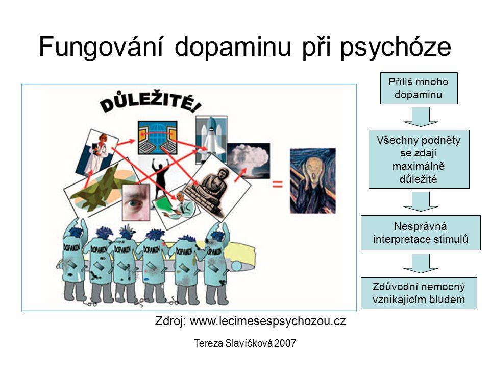 Tereza Slavíčková 2007 Zdroj: www.lecimesespsychozou.cz Fungování dopaminu při psychóze Příliš mnoho dopaminu Všechny podněty se zdají maximálně důležité Nesprávná interpretace stimulů Zdůvodní nemocný vznikajícím bludem